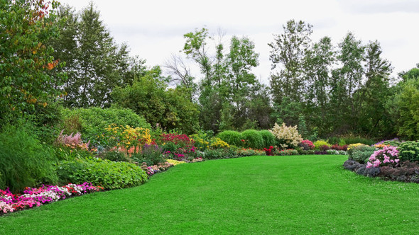 Spring Lawn Tips