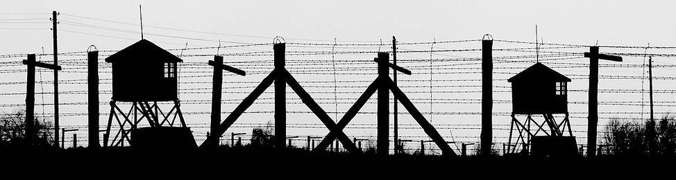 the-fence-4285613-Wix_edited.jpg