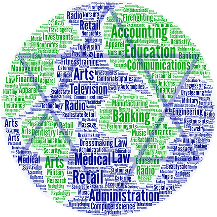 CSRA Word Cloud with Star-Web.png