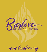BRESLOVE FINAL LOGO_Lighter BG.png