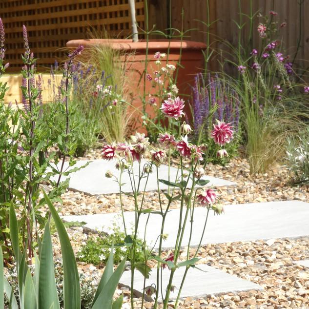Pretty Gravel Garden