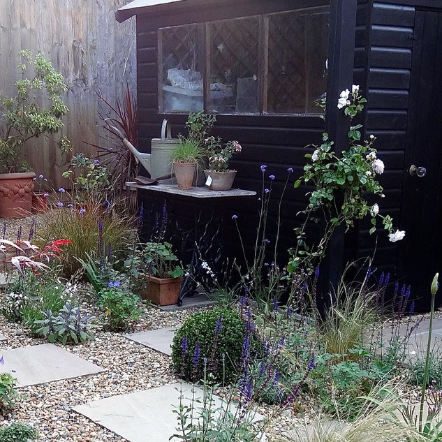 Small Garden with Character