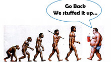 Human diet over evolution