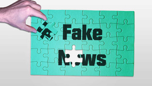 Countering Disinformation and Hate Speech Online