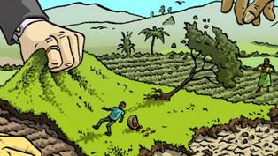 Land inequality threatens livelihood of 2.5 bln: Report