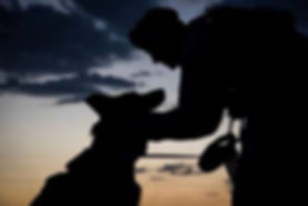 MILITARY DOG HANDLERS.ORG.jpg