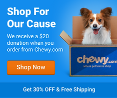 chewy.com banner.png