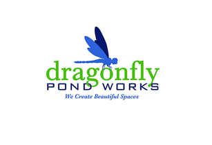 logo-dragonfly.png