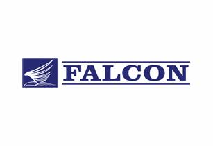 Falcon-Name-logo.png