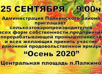 """Осень 2020"""