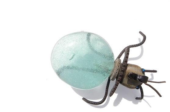 escarabajo1.jpg