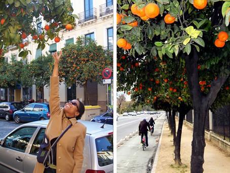 Frutta in città: cosa c'è che non va?