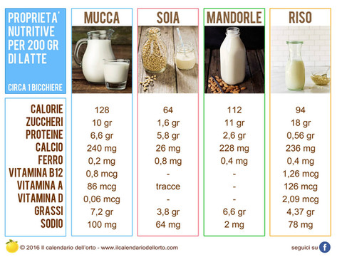 proprietà nutritive per vari tipi di latte