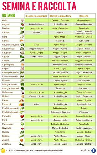Il calendario dell 39 orto schede tecniche - Calendario semina fiori ...