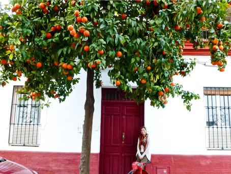 Frutta in città: perché no?