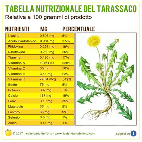 tabella nutrizionale del tarassaco