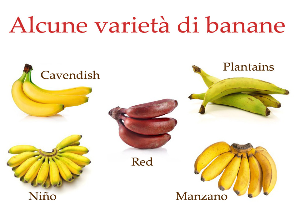 Alcune varietà di banane