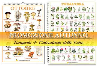 banner PROMOZIONE autunno.jpg