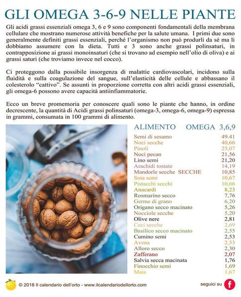 omega 3 6 9 negli alimenti