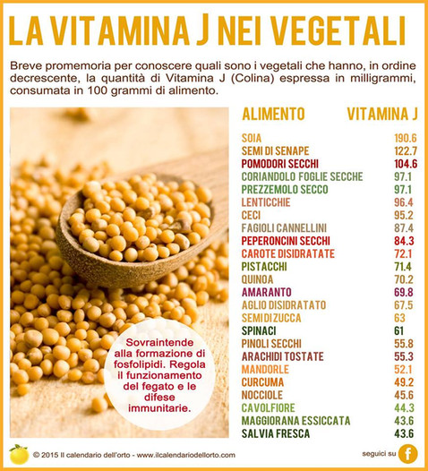 vitamina J