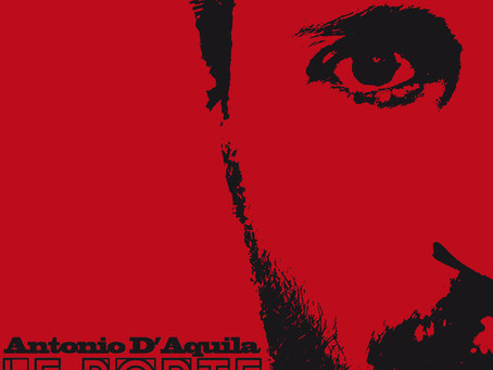 Le Porte di Antonio D'Aquila