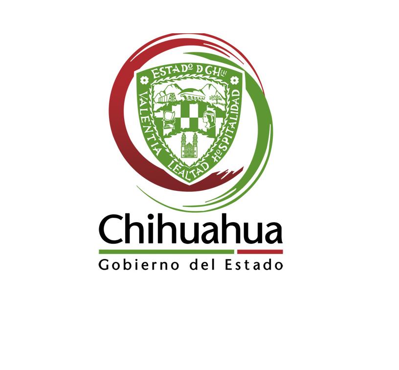 Chihuahua gob