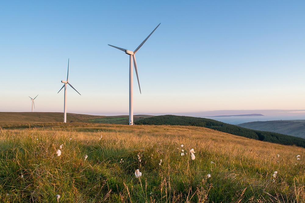 Wind turbines overlooking farm land