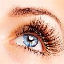 Pure Silk Lash Exttensions
