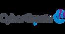 Logo-CyberGrants.png