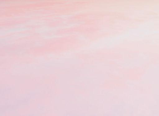 Background pink website.jpg