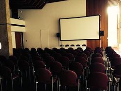 screening at the slovakian embassy, london