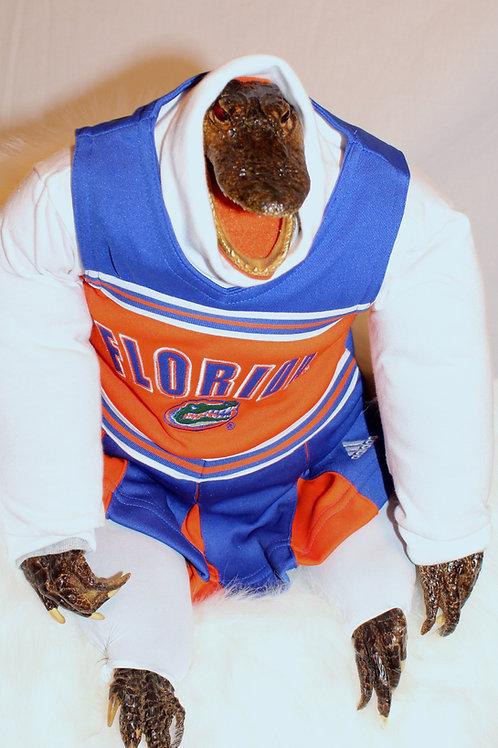 Florida Gator cheerleader