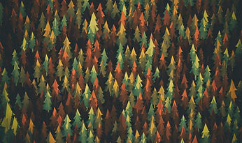 material-design-forest-lu.jpg