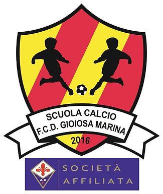 Gestione Social Media per: Scuola Calcio FCD Gioiosa Marina