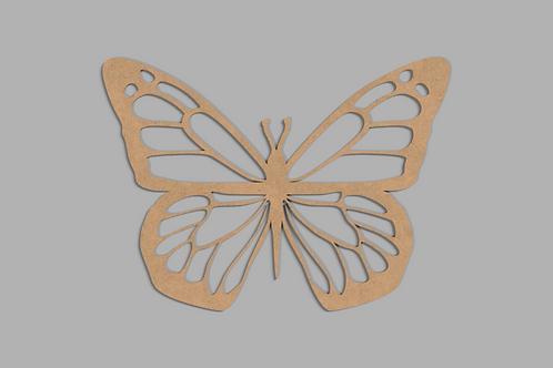 Motyl Maciej