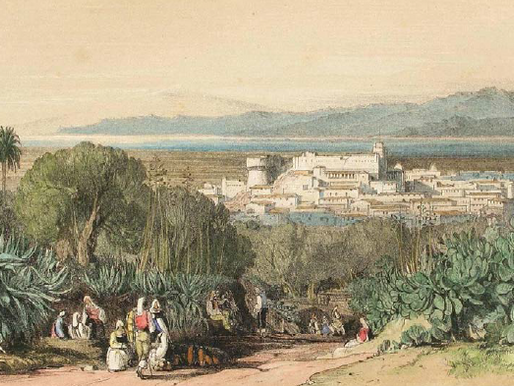 Memoirs of 19th century Calabria