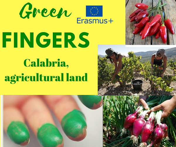 Green fingers - Calabria , agricultural