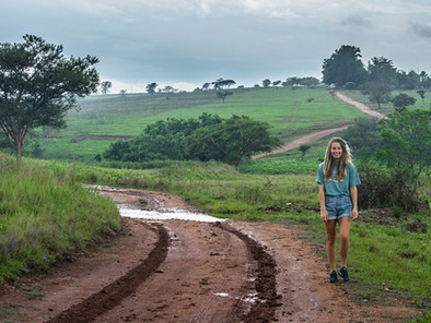 Self-drive Familiereis 15 dagen: Safari, bergen en strand