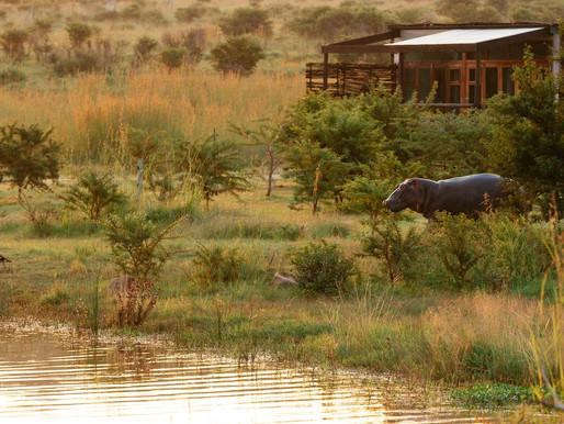 Exclusieve accommodaties: Safari, bergen en de Tuin route