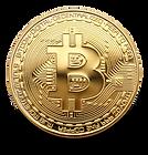 bitcoinpaygate-bitcoin-payment-gateway-p