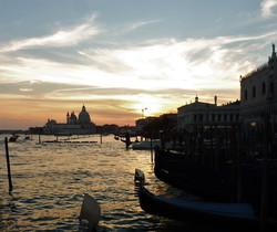 F Venice