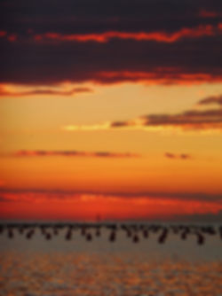 Sun set over the fender farm_edited.jpg