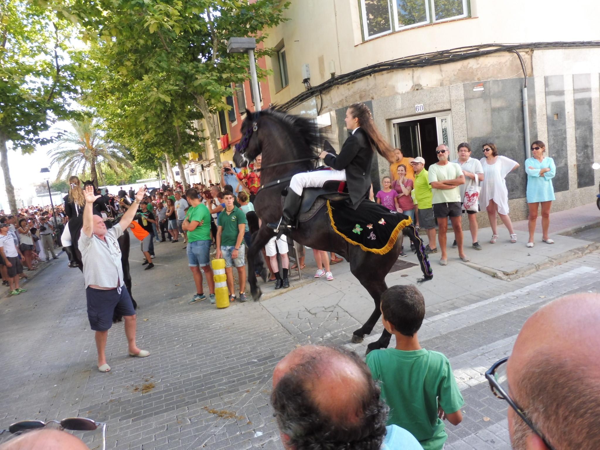 Mahon horses