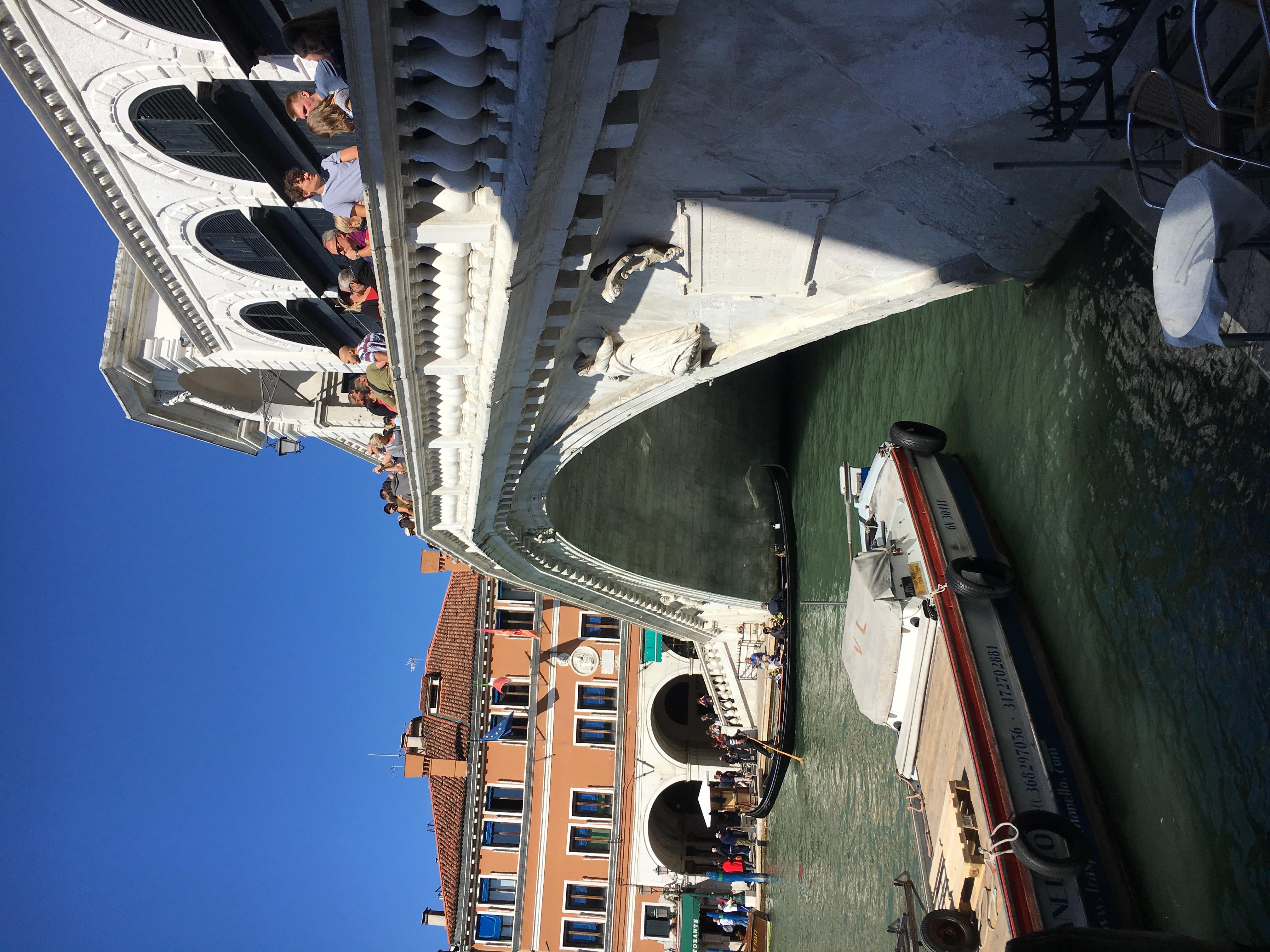 C. The bridge