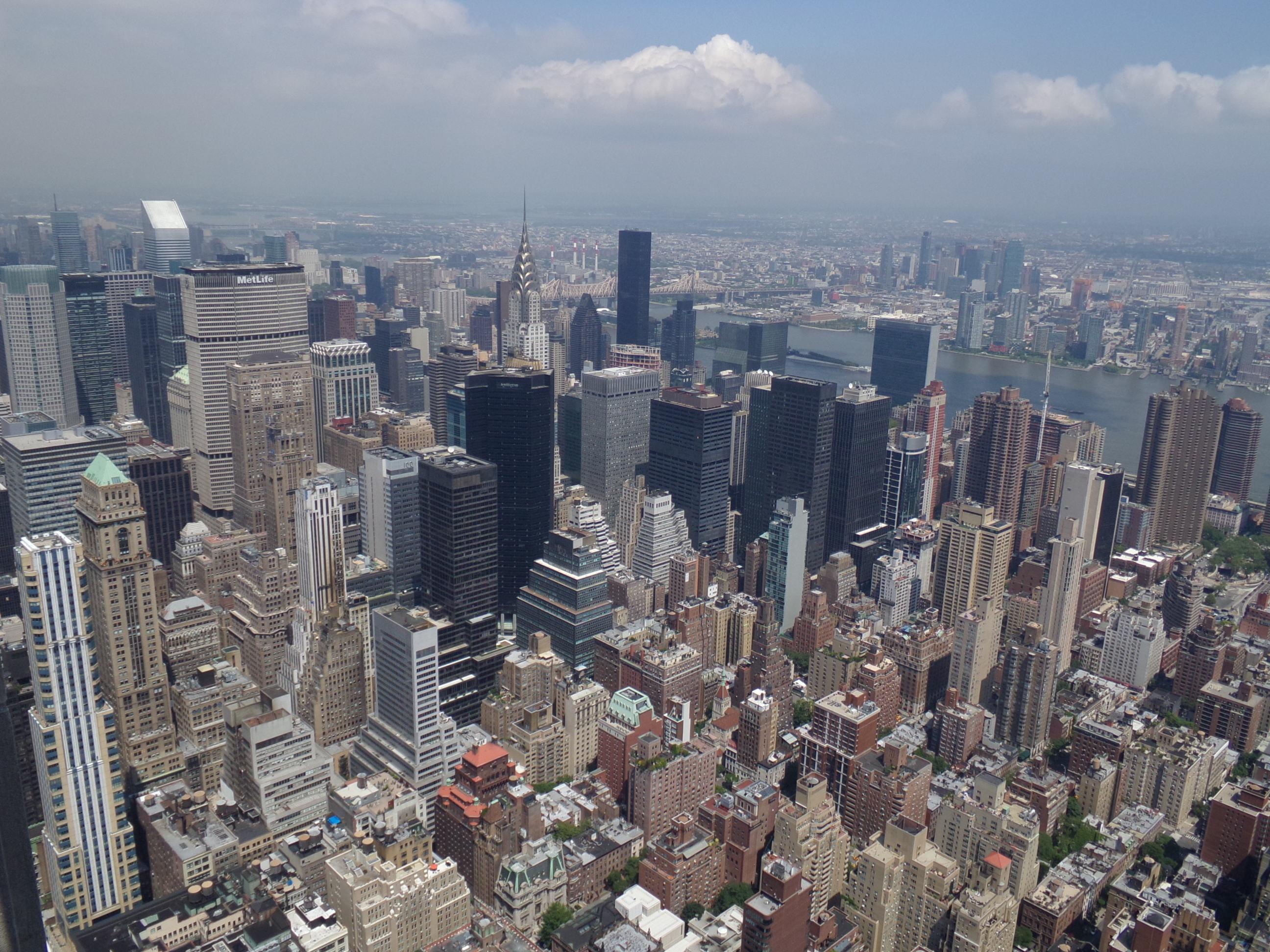 NY View
