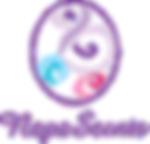 napa_logo_final-150.png