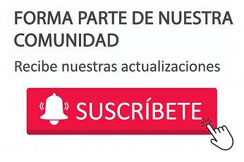 boton suscripcion website.jpg