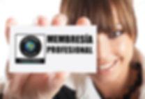membresia profesional aprendizaje experiencial