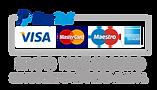 pago-paypal-seguro-300x172.png