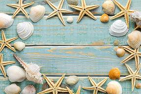 Sea shells frame on vintage shabby wood.